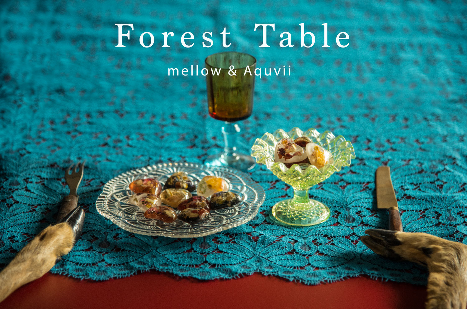 【 Forest Table 】mellow×Aquvii 1日限りの食堂に参加